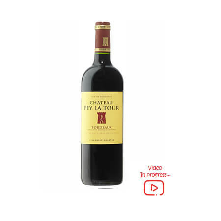 chateau-pey-la-tour-petite-winery-buy-online-red-wine