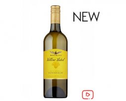 White wine sauvignon blanc New zeland